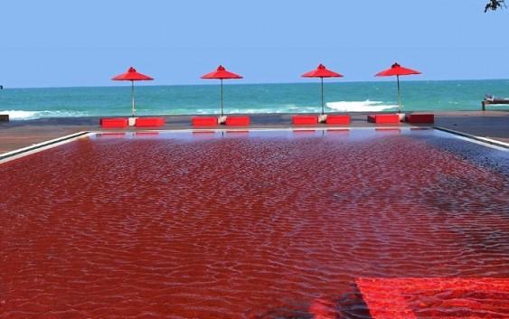 حوض سباحة معبأ بمياه من خمر في دولة عربية والشرطة تتصرف