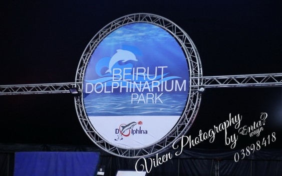 تغطية خاصة بالفيديو والصور| الدلافين في عرض مبهر في لبنان ضمن المعايير القانونية
